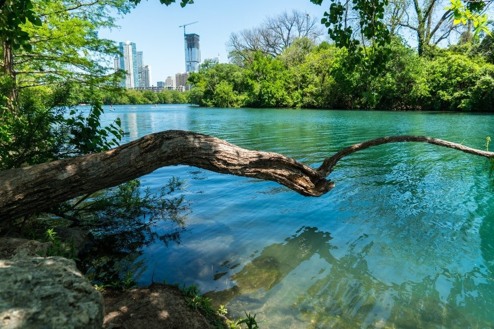 view into Austin Texas from barton creek